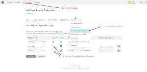 Mailchimp Required Fields